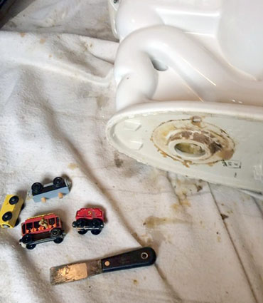 Toys that had been pushed down a toilet